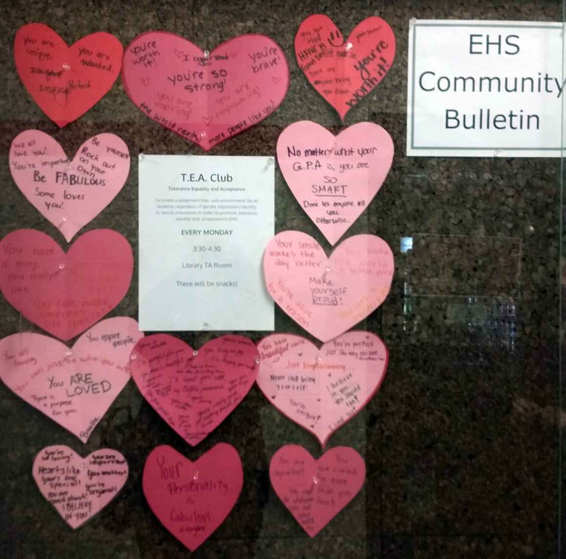Photo of Elkhorn TEA Club Bulletin Board