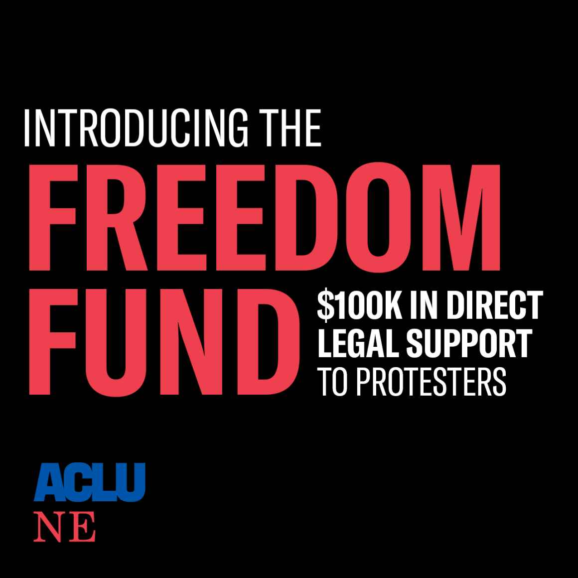 "A graphic reading ""Introducing the Freedom Fund"""